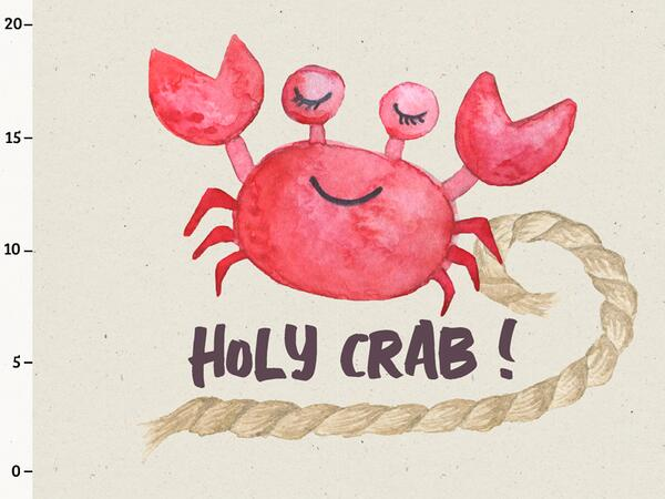 Bio-Jersey, Holy Crab Panel, Meer geht immer, by BioBox