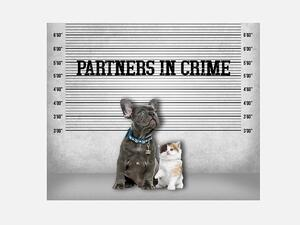 Bio-Jersey, POLIZEI Panel, partners in crime, Hund &...