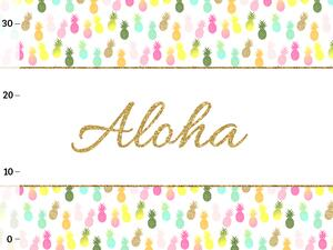 Bio-Jersey ANANAS summer ALOHA Panel, by Bio-Box