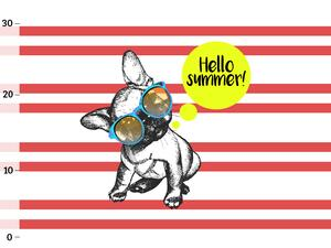 Bio-Jersey, Frenchie summer, French bulldog by BioBox
