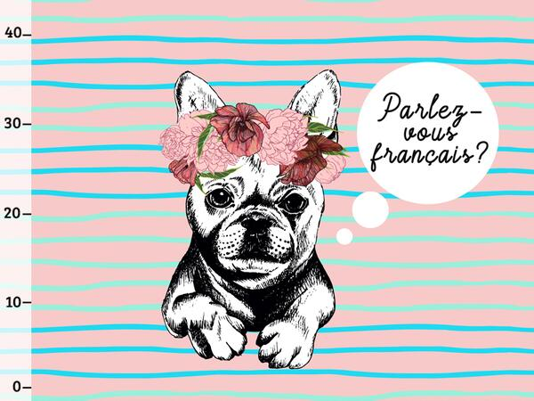 Bio-Jersey parlez vous XL Panel, Frenchies, French...