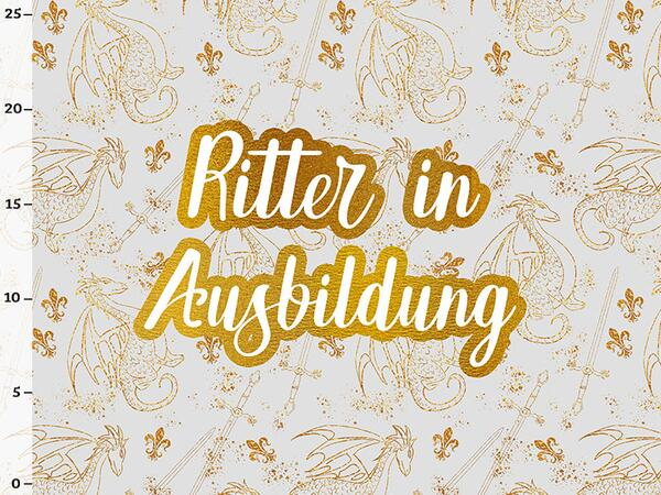 Bio-Jersey, Ritter in Ausbildung PANEL, Drachen & Ritter by BioBox