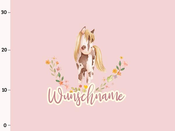 Bio-Jersey WUNSCHNAME Panel little Cowgirl, rosa, BioBox